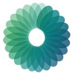 Logo CSI copy